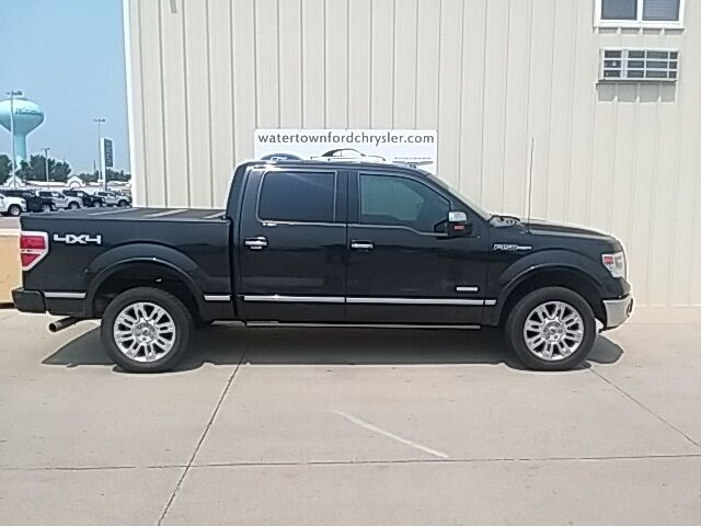 2014 Ford F-150 Platinum Watertown SD