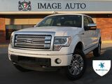 2014 Ford F-150 Platinum West Jordan UT
