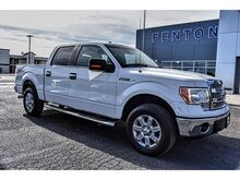 2014_Ford_F-150_XLT_ Pampa TX