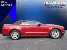 2014_Ford_Mustang__ Tampa FL