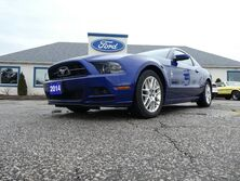 Ford Mustang V6 Premium- LOW KM- LEATHER- HEATED SEATS 2014