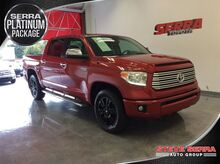 2014_Toyota_Tundra 2WD Truck_Platinum_ Decatur AL