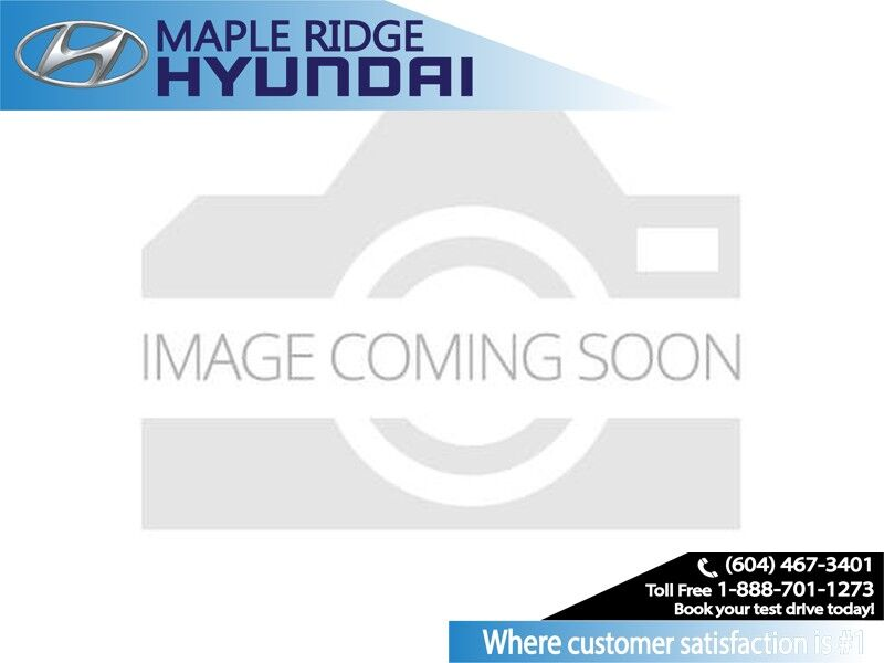 2015 Dodge Charger 4dr Sdn SXT AWD Maple Ridge BC