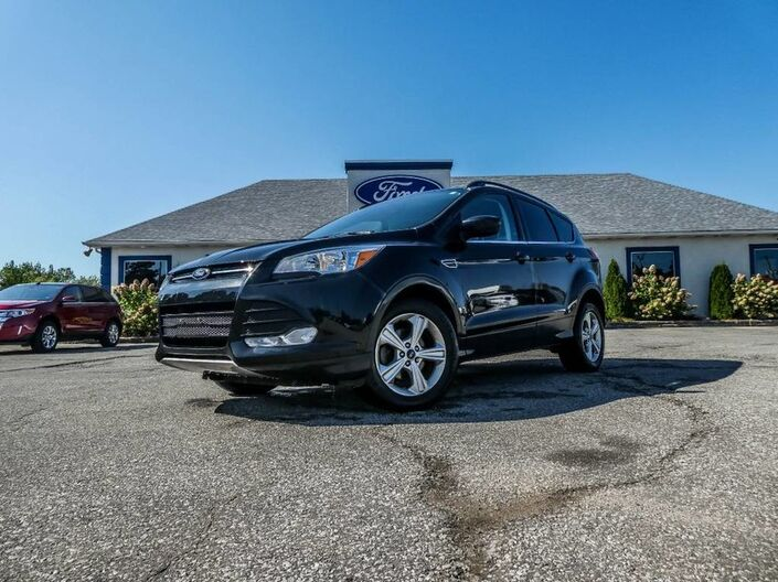 2015 Ford Escape SE- BLUETOOTH- BACKUP CAMERA- HEATED SEATS Essex ON