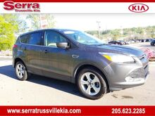 2015_Ford_Escape_SE_ Trussville AL