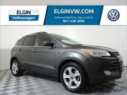2015_Ford_Escape_SE_ Elgin IL