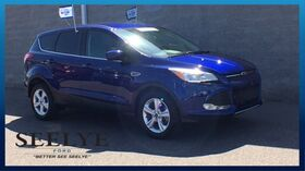 2015_Ford_Escape_SE_ Kalamazoo MI