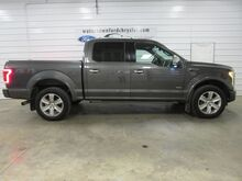 2015_Ford_F-150_Platinum_ Watertown SD