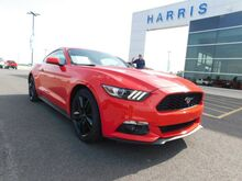 2015_Ford_Mustang__ Newport AR