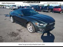 2015_Ford_Mustang_EcoBoost_ Watertown NY