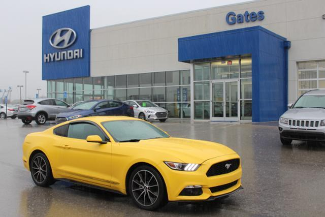2015 Ford Mustang Ecoboost Fastback w/19 Wheels & Rr Richmond KY