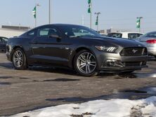 Ford Mustang GT Green Bay WI