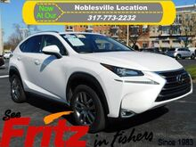 2015_Lexus_NX 200t__ Fishers IN