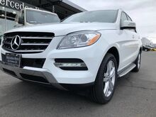 2015_Mercedes-Benz_ML 250 BlueTEC__ Yakima WA