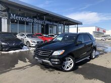 2015_Mercedes-Benz_ML_350 4MATIC® SUV_ Yakima WA