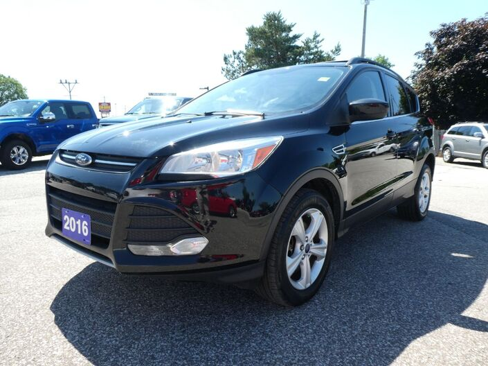 2016 Ford Escape SE Back Up Camera Cruise Control Heated Seats Essex ON