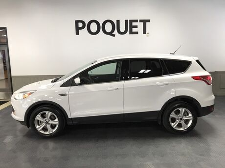 2016 Ford Escape SE Golden Valley MN