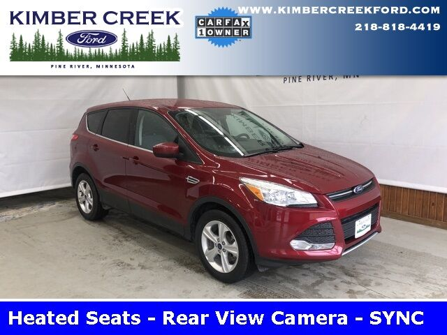 2016 Ford Escape SE Pine River MN