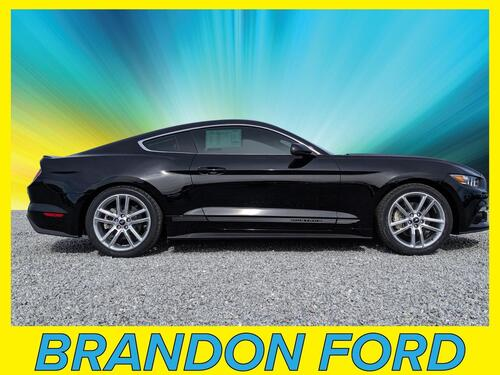 2016 Ford Mustang  Tampa FL