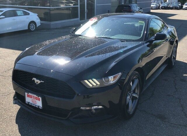 2016 Ford Mustang EcoBoost Hackettstown NJ