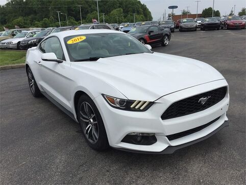 2016_Ford_Mustang_FASTBACK ECOBOOST_ Evansville IN