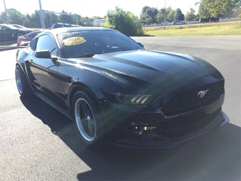 2016_Ford_Mustang_FASTBACK V6_ Evansville IN