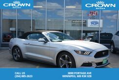2016_Ford_Mustang_V6 Convertible *Accident Free/Upgraded Tires*_ Winnipeg MB