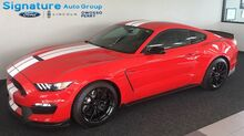 2016_Ford_Shelby GT350_Shelby GT350_ Perry & Owosso MI