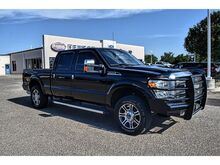 2016_Ford_Super Duty F-250 SRW_Platinum_ Dumas TX