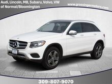 2016_Mercedes-Benz_GLC_GLC 300_ Normal IL