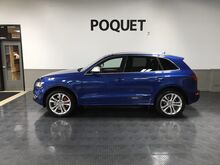 2017_Audi_SQ5_Premium Plus_ Golden Valley MN