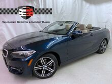2017_BMW_2 Series_230i xDrive Convertible Sportline Premium Driver Assist_ Maplewood MN