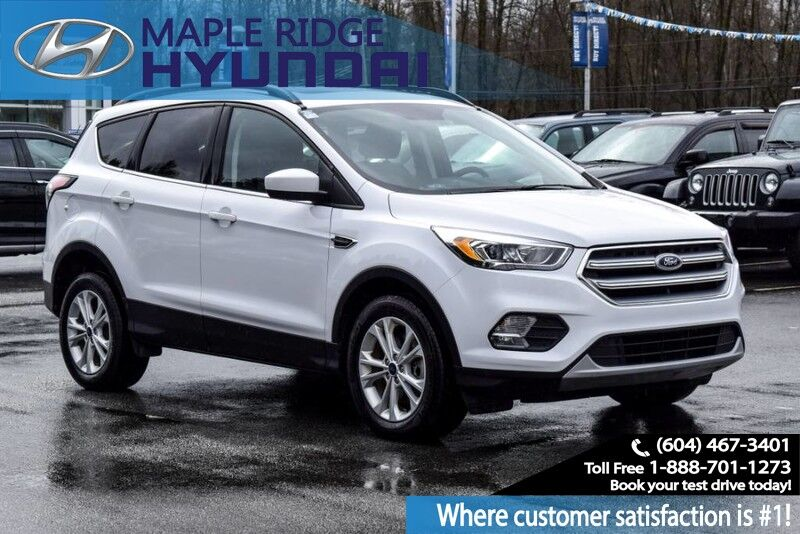 2017 Ford Escape 4WD 4dr SE Maple Ridge BC