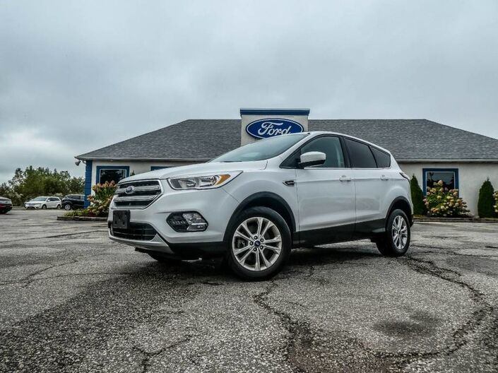 2017 Ford Escape SE- 4X4- 2.0L- BLUETOOTH- BACKUP CAMERA Essex ON