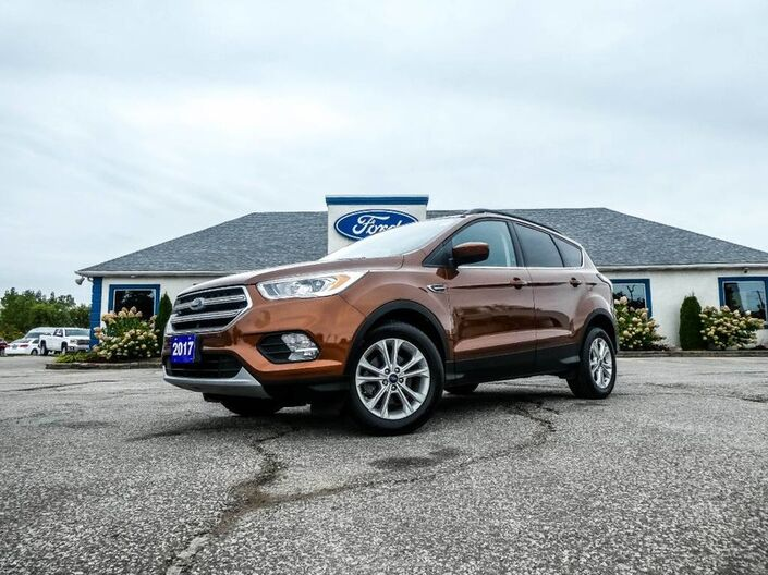 2017 Ford Escape SE- SYNC- BACKUP CAMERA- HEATED SEATS Essex ON