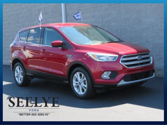2017 Ford Escape SE Battle Creek MI