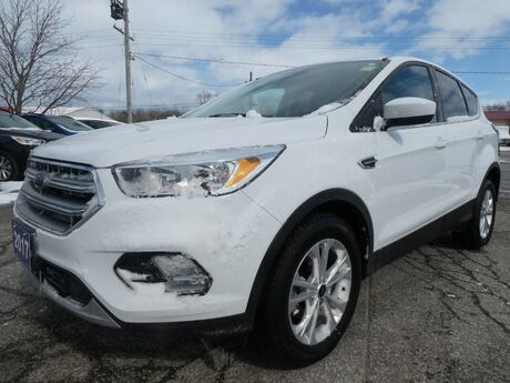 2017 Ford Escape SE Heated Seats Back Up Cam Local Trade LOW KM Essex ON
