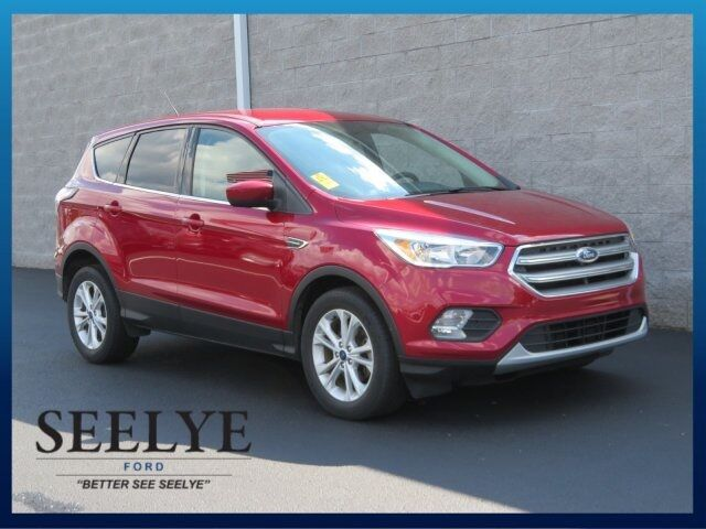 2017 Ford Escape SE Kalamazoo MI