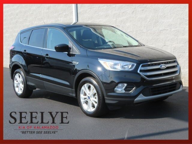 2017 Ford Escape SE Paw Paw MI