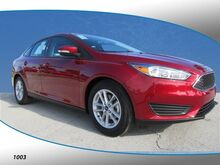 2017_Ford_Focus_SE_ Belleview FL