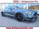 2017 Ford Mustang GT Coupe,
