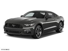 2017_Ford_Mustang__ Alexandria KY