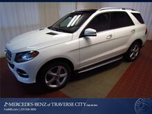 2017_Mercedes-Benz_GLE_350_ Traverse City MI
