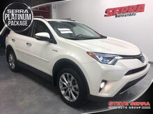 2017_Toyota_RAV4 Hybrid_Limited_ Central and North AL