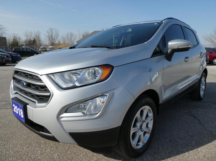 2018 Ford EcoSport SE | Navigation | Blind Spot Detection | Heated Seats Essex ON