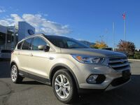 Ford Escape 2018 SE 2018
