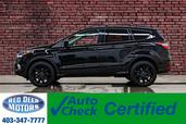 2018 Ford Escape AWD SE Appearance Pkg Nav BCam