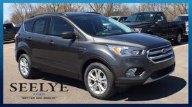 2018_Ford_Escape_SE_ Kalamazoo MI