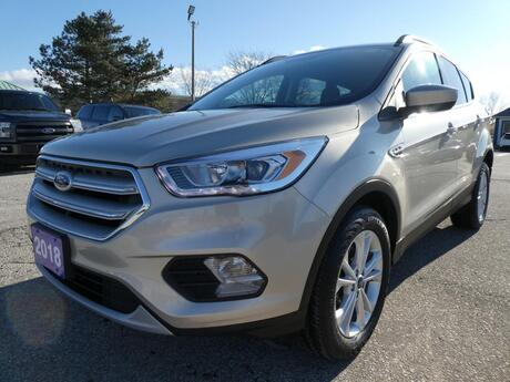 2018 Ford Escape SEL   Power Lift Gate   Heated Seats   Back Up Cam Essex ON