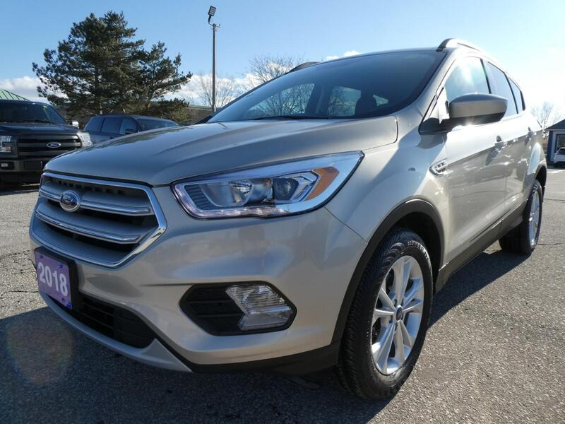 2018 Ford Escape SEL | Power Lift Gate | Heated Seats | Back Up Cam Essex ON